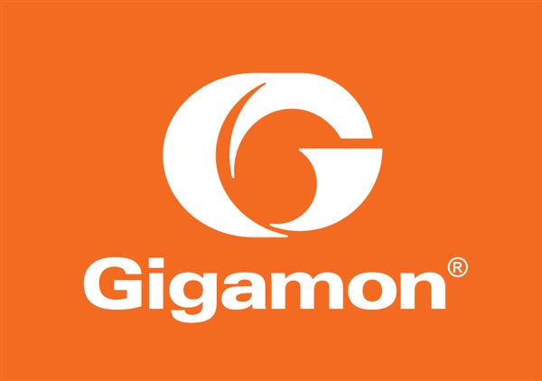 Gigamon proudly sponsors this survey